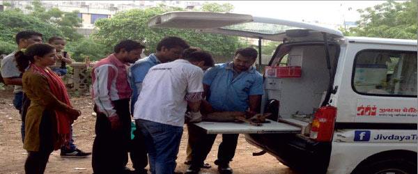 Jivdaya Trust Ahmedabad